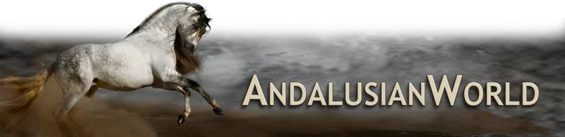 Andalusion world cup logo